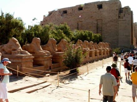 Tempelanlage Karnak - Amonstempel Karnak