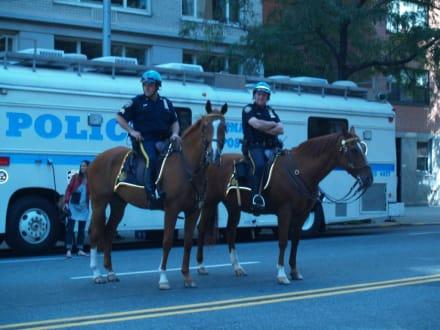 Berittene Polizei - Steuben Parade New York