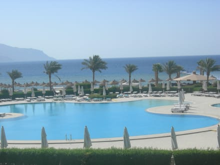 Piscine  - Hotel Baron Resort