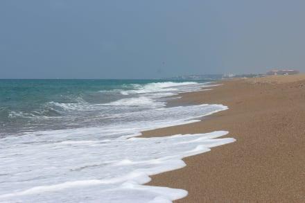 Einsamer Strand (Stop Nummer 1) - Blaue Reise