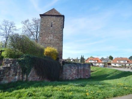 Wetter Wissembourg