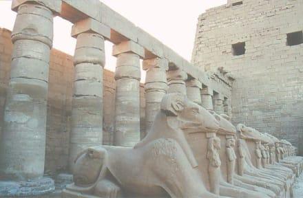 Eingang am Karnak Tempel - Amonstempel Karnak