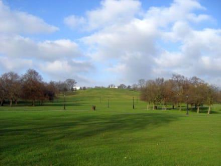 Der Primrose HIll - Primrose Hill