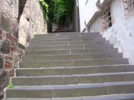 steiler Aufstieg - Landgrafenschloss Marburg