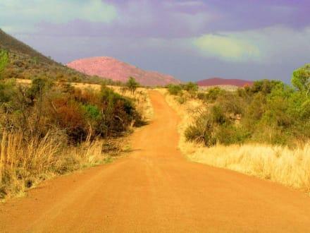 Pilanesberg NP - Pilanesberg Nationalpark