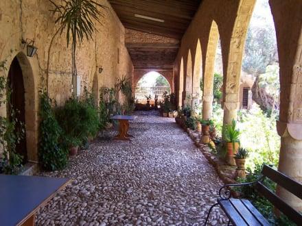 Kloster von Ayia Napa - Kloster Ayia Napa