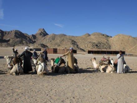 Camelreiten in der Wüste - Jeep Safari Hurghada