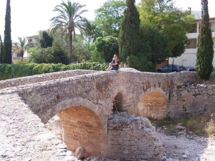 Römische Brücke Pont Romá - Pont Romà
