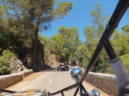 Tour 2 - Buggy Touren Buggy4Fun Can Picafort