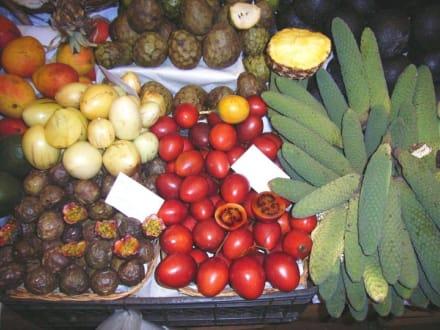 Mercado dos Lavradores - Markthalle Mercado dos Lavradores