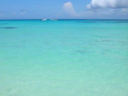 Wenn Träume wahr werden Insel Saona - Isla Saona