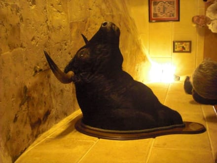 stierkopf deko im la cueva bild restaurant la cueva in palma de mallorca. Black Bedroom Furniture Sets. Home Design Ideas