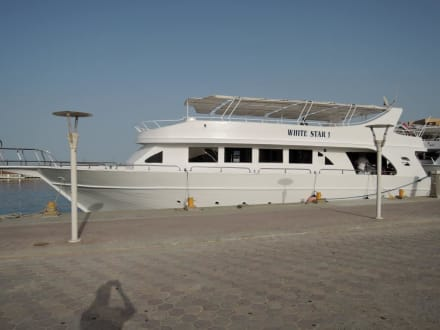 Das Boot von Mo - Delfinausflug mit Mo