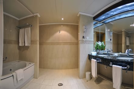 Suite bathroom -