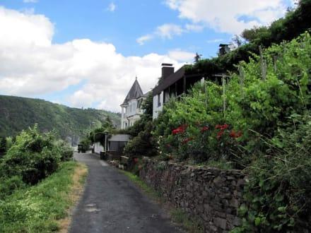 Weinbergweg - Moselromantik Hotel Thul