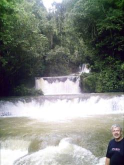 Y.S Falls Wasserfällen in der nähe von Mandeville - YS Falls / Y.S. Wasserfälle