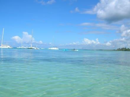 Wie im Paradies - Isla Saona