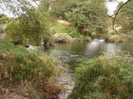 Mzima Springs - Tsavo West Nationalpark