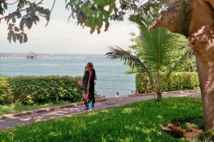 Park am Ozean neben Fort Jesus - Fort Jesus Museum