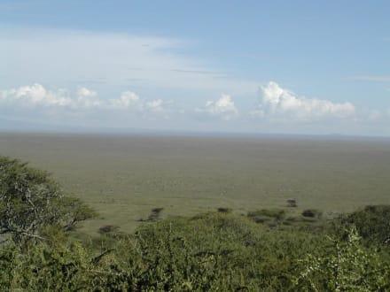 Serengeti - Serengeti Nationalpark