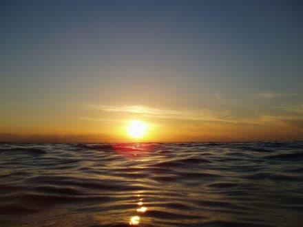 Sonnenuntergang - direkt aus dem Wasser - Ausflug mit Mohamed