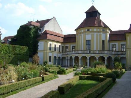 Ingolstadt - Deutsches Medizinhistorisches Museum