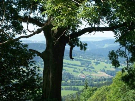 Auf dem Weg nach Harrachow - Wandern