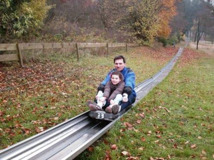 Rück-Tour - Sommerrodelbahn und Skilift