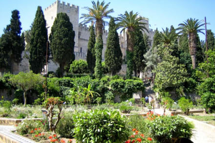 Gartenanlage mit Blick auf Großmeisterpalast - Großmeisterpalast
