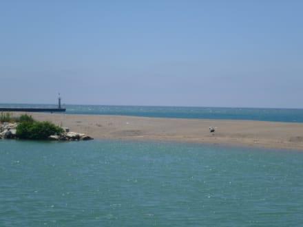 Oben Salzwasser unten Süßwasser - Economic Tour Ufo Vakantieman Travel Agency