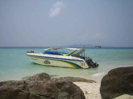 Speedboat - Schnorcheltrip mit Speedboot