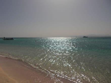 Auf der Giftun Insel (Schnorcheltour) - Giftun / Mahmya Inseln