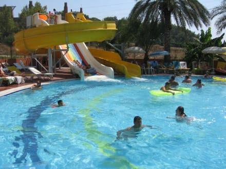 Booking com: Palm D or Hotel - Сиде, Турция