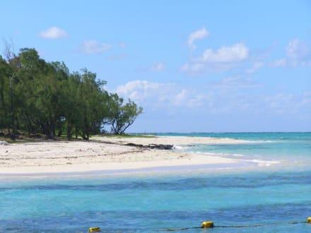 Auf der Insel - Île aux Cerfs