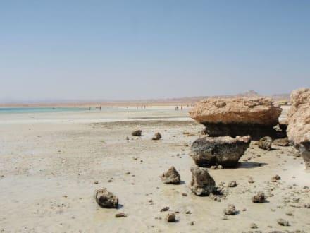Strand/Küste/Hafen - Sharm el Loli