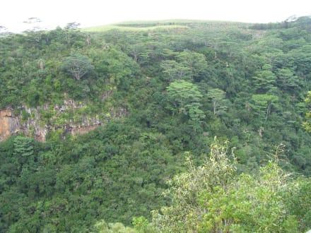 Ganz in der Nähe des Wasserfalls - Chamarel-Wasserfall