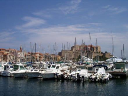 Der Hafen von Calvi - Hafen Calvi