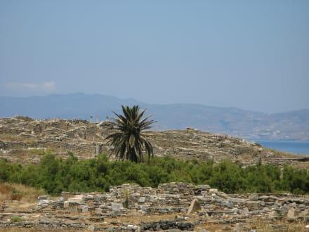 Ausgrabung Delos - Insel Delos