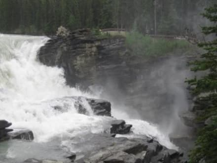 Athabasca Falls am Icefields Parkway - Athabasca Falls