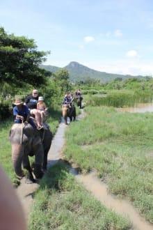 Elefantenritt - Hua Hin Safari & Adventure Park