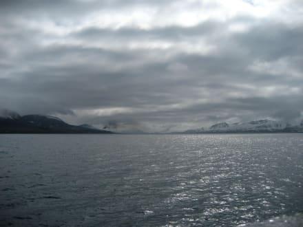 Der 1. Blick auf Barentsburg - Barentsburg