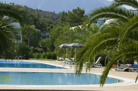 Holiday Village pool  -