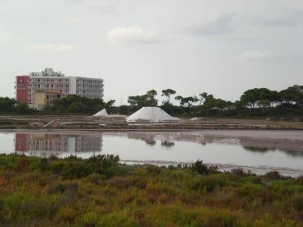 Die Salinen - Salinas d'Es Trenc
