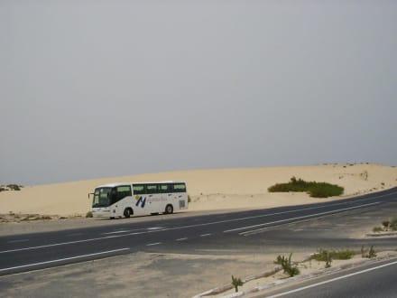 Dünenlandschaft El Jable - Naturpark Dünen von Corralejo