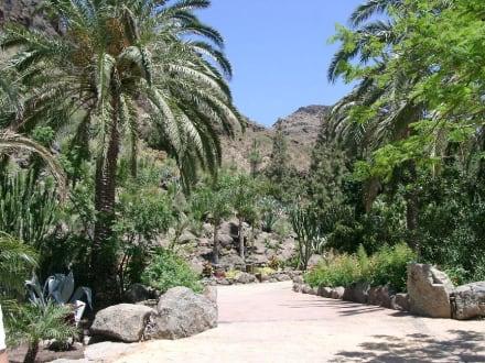 Palimtos Park - Eingangsbereich - Palmitos Park