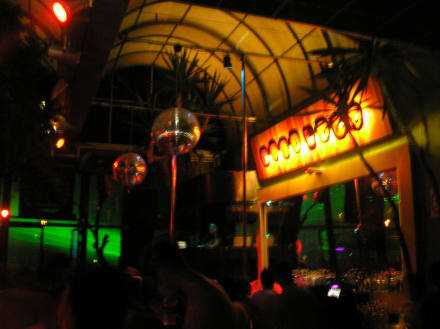Disco/Club - Privilege Nightclub