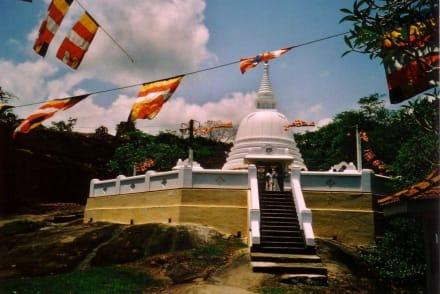 Aluthepola Tempel, 2550. Geb. Buddah - Aluthepola Tempel