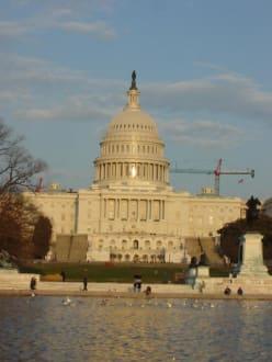 Das Capitol am Abend - Capitol