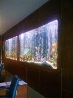 Das schönste an der Rezeption war das Aquarium - Hotel Grand Side