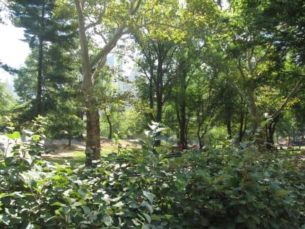 Sonstige Sehenswürdigkeit - Central Park